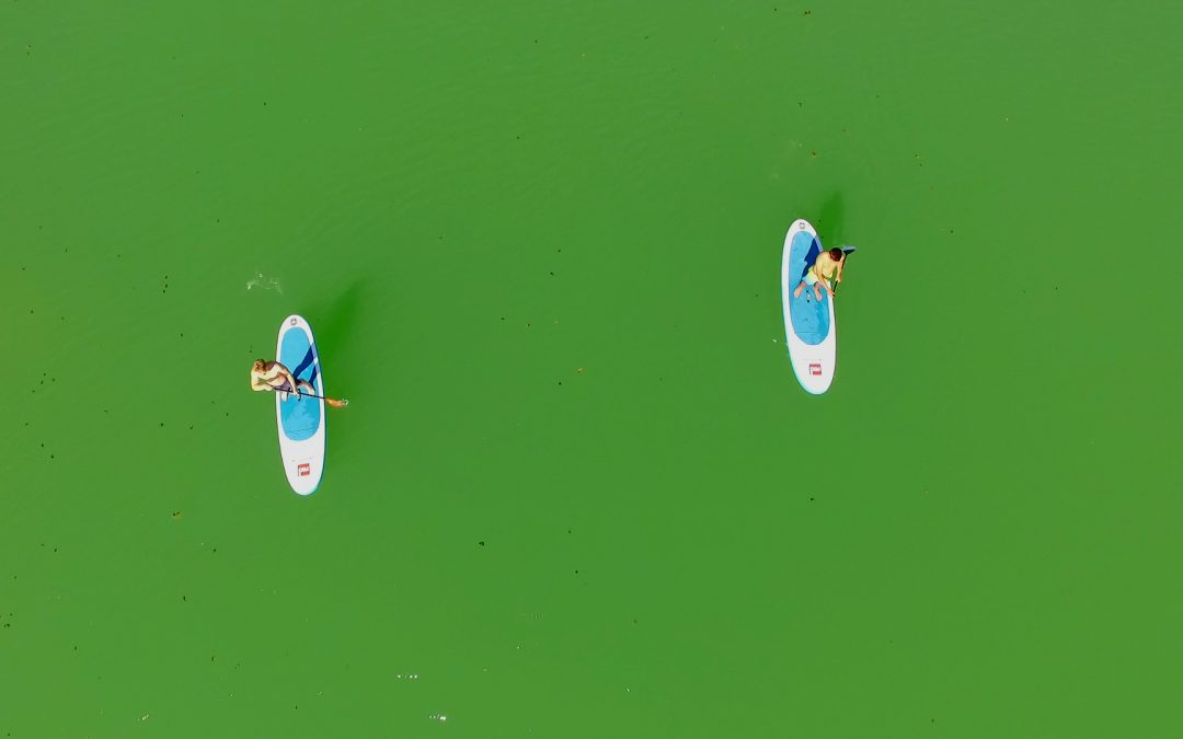 """Up in the air"" – Aerial Foto Workshop"