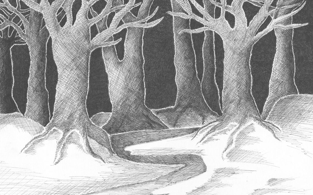 Der Wald. Vom Kopf in die Hand.